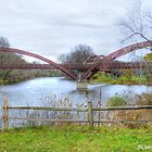 "The ""Tridge"" by BarbL"