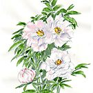 Ice-pink Peonies by Maree Clarkson