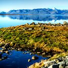 An Afternoon at the Fjords by Mari  Wirta