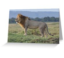King of the termite hill Greeting Card