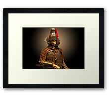 South Korean Warrior Framed Print