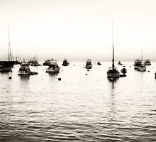 Catalina Island boats by Light Right Photos