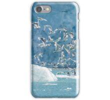 Birds in Svalbard iPhone Case/Skin