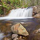 Little River Cascades by Travis Easton
