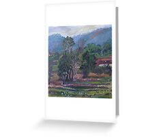 Winter Evening - Coffs Harbour Greeting Card
