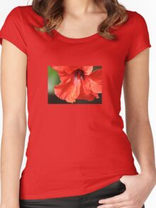Red Petal and Anther with Pistil of Hibiscus Flower Women's Fitted Scoop T-Shirt