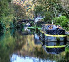 Autumn colours in Hebden Bridge by inkedsandra