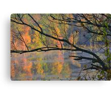 Songster in the trees Canvas Print