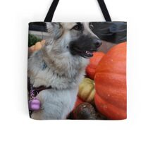 Can I eat this Pumpkin Mom? Tote Bag