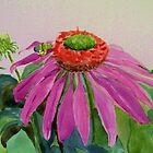 Cone Flower with Bee by watercolors1