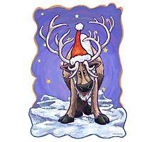 Reindeer Christmas Photographic Print