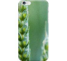 Barley - Impressionism iPhone Case/Skin