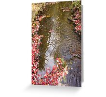 Renfrew Ravine - Leaves and the creek Greeting Card