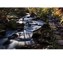 Autumn on Wyming Brook II Photographic Print