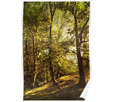 Trees and Meadow Poster