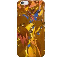 Autumn leaves mosiac -2  iPhone Case/Skin