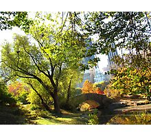 Autumn Paradise, Central Park - New York City  Photographic Print