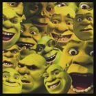Shrek Collection by James Mclean