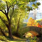 Autumn Paradise, Central Park - New York City  by Alberto  DeJesus