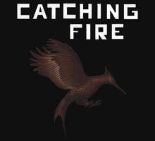 Catching Fire by designCENTRAL