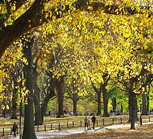Autumn stroll in Central Park, New York City by Alberto  DeJesus
