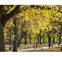 Autumn stroll in Central Park, New York City Photographic Print