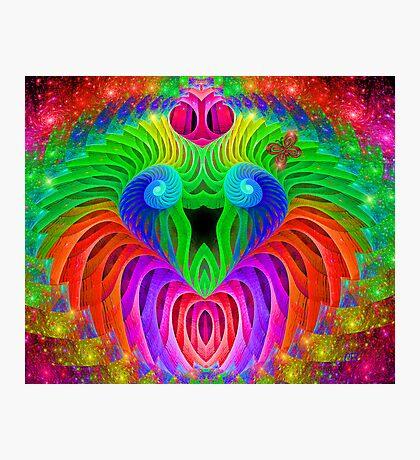 Rainbow Serenade Photographic Print