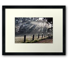 ~ Sunbeams ~ Framed Print