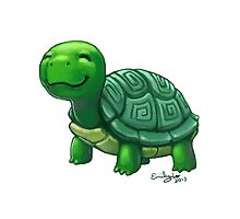 Tortoise by bemily
