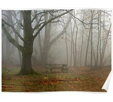 Misty Maples at Twin Lakes Poster