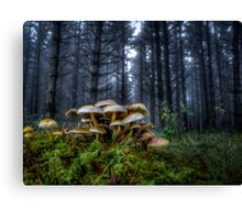 The Rat Pack ~ Wild Mushrooms ~ Canvas Print