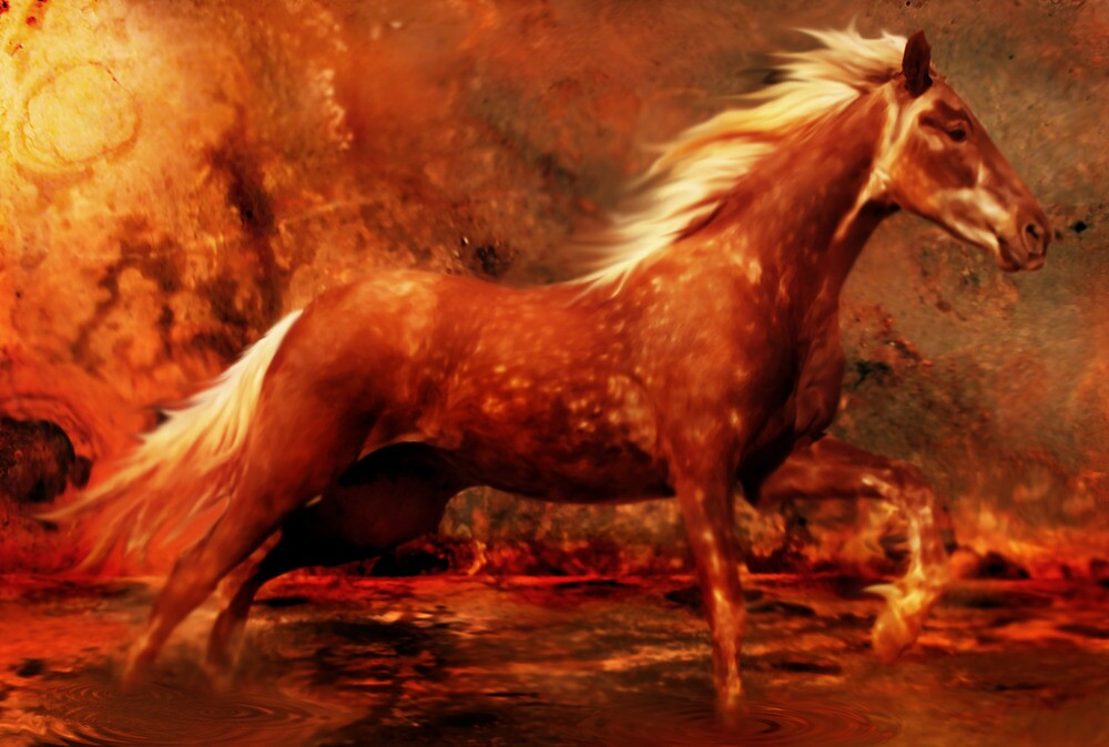 Rustic Fire by Cliff Vestergaard
