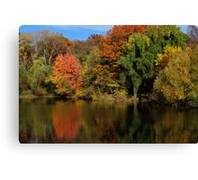 Autumnal Light in Central Park NYC Canvas Print