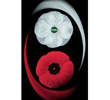 POPPIES ~ PEACE  & REMEMBRANCE GO TOGETHER UNITED WE STAND IPHONE CASE by ✿✿ Bonita ✿✿ ђєℓℓσ
