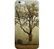 Earth Tones iPhone Case/Skin