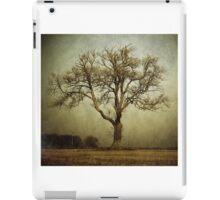 Earth Tones iPad Case/Skin