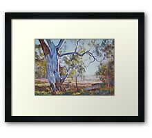 Sunday Creek Sentinel Framed Print