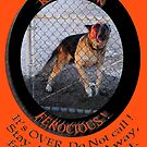 FEROCIOUS ... a warning  by DAdeSimone