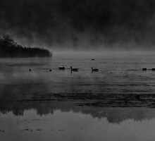 Foggy Morning At The Lake by Thomas Young