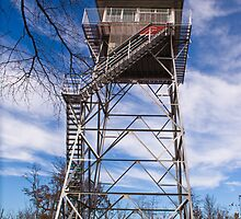 PInnacle Knob Fire Tower by Nicole  McKinney