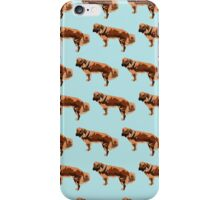 Baby Blue Mutt Color Pattern iPhone Case/Skin