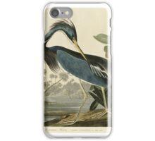 John James Audubon (Jean-Jacques Audubon)  LOUISIANA HERON iPhone Case/Skin