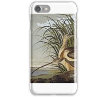 John James Audubon (Jean-Jacques Audubon) , MALE AND FEMALE LONG BILLED CURLEW iPhone Case/Skin
