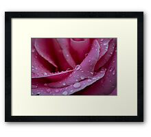 Fallen Raindrops form a Star Framed Print
