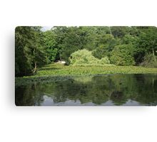Pond Reflection Canvas Print