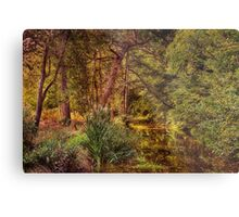 Norfolk River Metal Print