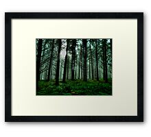 It'sA Green World ~ Fir Trees ~ Framed Print