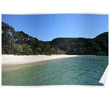 Abel Tasman Beach - New Zealand Poster