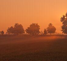 morning's veil by jhawa