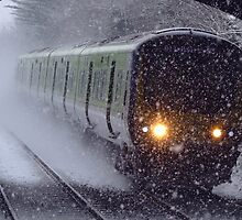 Train in the snow by Marcin Roger